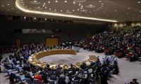 越南和联安理会:越南支持寻求叙利亚问题的政治解决