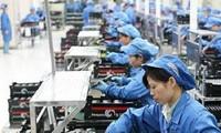 越南劳动工人革新思维和主动适应 以有效融入国际