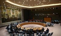 越南主持联合国安理会十个非常任理事国同联合国秘书长的视频会议