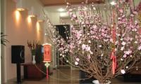 民族传统春节习俗