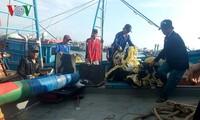 Кханьхоа: Рыбаки выходят в район архипелага Чыонгша для промысловой деятельности после Тэта