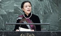 Вьетнам призывает ООН к реформированию миротворческой деятельности