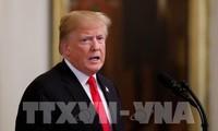 Президент США Дональд Трамп примет участие в 11-х предвыборных кампаниях