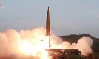 КНДР заявила про испытание новой системы многократного запуска ракет