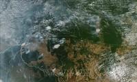 Генсек ООН выразил обеспокоенность в связи с пожарами в экваториальных лесах Амазонии