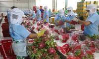 Положительное сальдо торгового баланса Вьетнама за первый квартал достигло почти $3,8 млрд