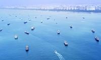 Вьетнам примет участие в онлайн конференции на тему «Научная дипломатия – фактор изменения ситуации в Восточном море»