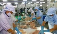 Вьетнамские морепродукты имеют большой потенциал для экспорта в ЕС