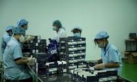 Cоздание уникальной конкурентоспособной продукции помогает предприятиям города Хошимина увеличивать объем экспорта