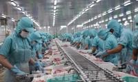 Объем экспорта морских продуктов Вьетнама в 2020 году может достичь $8,6 млрд