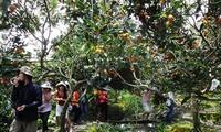 Развитие экотуризма в провинции Бариа-Вунгтау