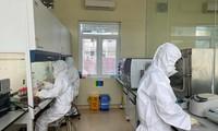 Был выявлен новый британский штамм SARS-CoV-2 у пациентов в провинциях Хайзыонг и Куангнинь