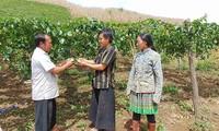 Социально значимые изменения в селении Фиенгкай