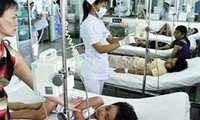 Meeting marks ASEAN Dengue Fever Day