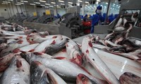 New US farm bill hurts Vietnamese fish export