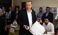 Ruling AKP wins majority of votes in Turkey's election
