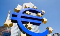 Eurozone to pay 40-50 billion euros of Greek bailout