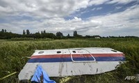 MH17 probe finds 'probable' BUK missile pieces at crash site