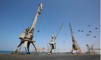 Arab coalition to reopen Yemen's seaport