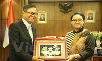 Vietnam diplomat vows to make active contributions to ASEAN