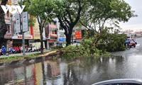 Storm Noul wreaks havoc in central region after making landfall