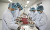 Cận cảnh quy trình gia công vaccine Sputnik V tại Việt Nam