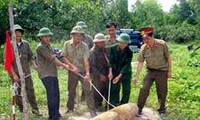 Joint effort to clear bombs and landmines