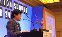Vietnam supports single aviation market