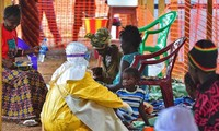 UN vows to play a central role in fighting Ebola epidemic