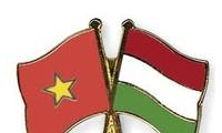 Meeting marks 65th anniversary of Vietnam-Hungary diplomatic ties