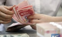 Chinese Premier reassures about yuan