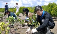 Vietnam, Germany promote cooperation in natural resources and environment