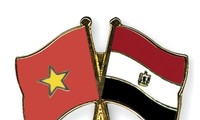 Vietnamese ambassador presents credentials to Egyptian President
