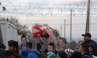 Egypt's migrant departures stir new concern in Europe
