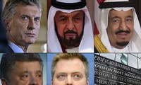 Countries open Panama Papers probes