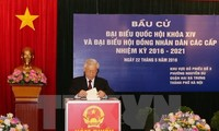 Foreign media highlight Vietnam's general election