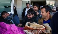 Car bombs kill 25 in Iraq