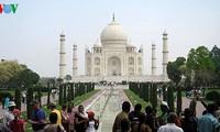 Vietnam, India boost tourism cooperation