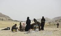 50,000 Syrians return to Ankara-controlled areas in Syria