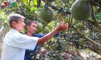 Tran Cong Len helps farmers escape poverty