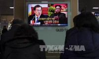 Two Koreas prepare for high-level talks