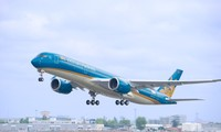 Vietnam Airlines transports apricot, peach blossoms for lunar New Year