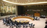 UNSC discusses UN-ASEAN cooperation