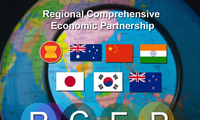 RCEP meeting in Hanoi to bring new change to regional, global trade