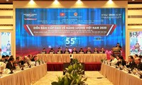 Vietnam Energy Summit 2020: Private sector encouraged to engage in energy development