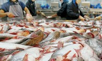Seafood exports expected to reach 20 billion USD by 2030