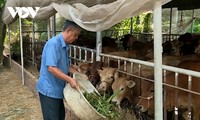 Outstanding farmer in Tra Vinh helps reduce poverty