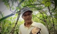 Ca Mau farmer makes items from avicennia trees
