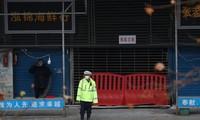 WHO experts set to arrive in China for coronavirus origin probe