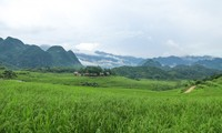 Pu Luong, a fantastic retreat for nature lovers